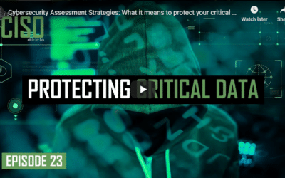 Cybersecurity Assessment Strategies: What It Means To Protect Your Critical Data
